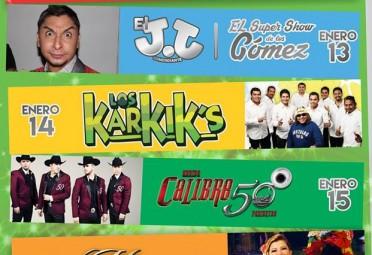 Feria Villaflores 2015 1