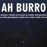 Ah Burro