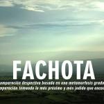 Fachota