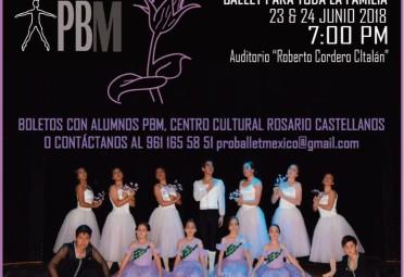 Mimosifolia Ballet Para Toda La Familia 1